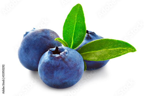 Three fresh blueberry isolated on white background