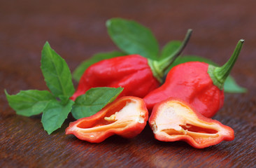 Bhut Jolokia chili peppers with mint leaves