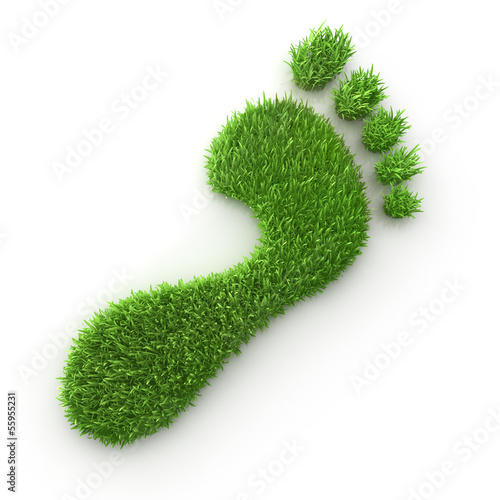 Single green footprint