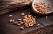 chicchi di grano sulla tavola di legno