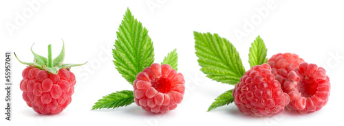 Sweet raspberries - 55957041