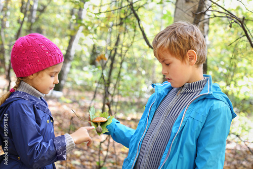 Boy in blue jacket holds green leaf and toadstool and shows it