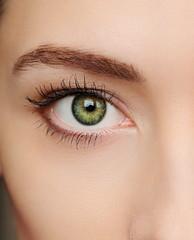 Macro green eye of beautiful woman. Closeup portrait