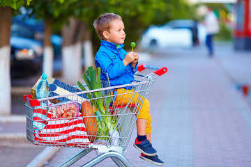 kid in trolley full of foodstuffs after shopping