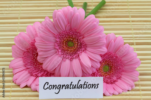 Congratulations card with pink gerbera daisies
