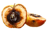 Rotten apple halves isolated. Food waste.