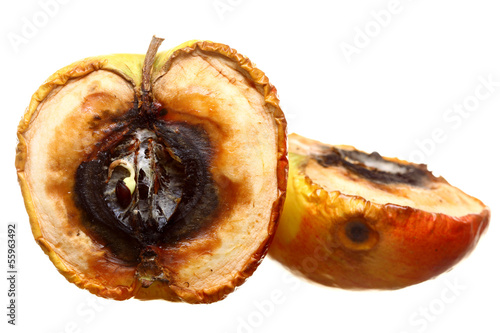 canvas print picture Rotten apple halves isolated. Food waste.