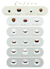 Different Type of Coffee Menu or Coffee Guide