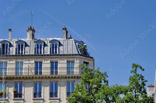 canvas print picture Immeuble parisien, toit gris, ciel bleu
