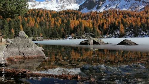 laghetto  alpino in autunno