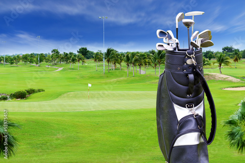 Golf course with plam tree and golf bag