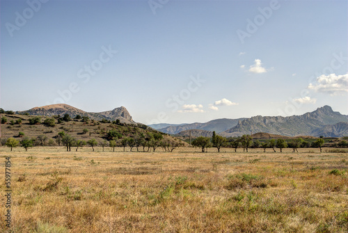 Steppe Landscape with Mountains