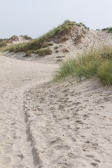 Sandy dunes at the wadden islands in Holland