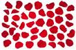 Obrazy na płótnie, fototapety, zdjęcia, fotoobrazy drukowane : Red rose petals.