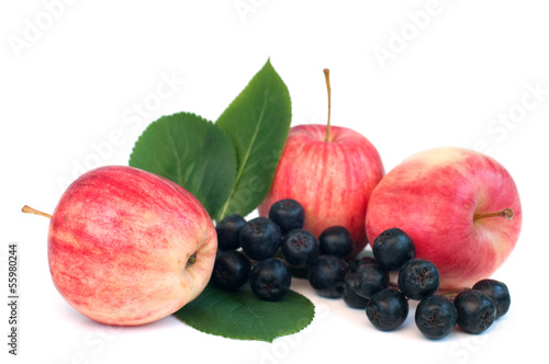 apples and chokeberry