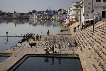 India, Pushkar, indian pilgrims take a bath in the sacred lake
