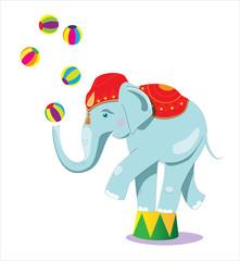 Circus elephant as acrobat