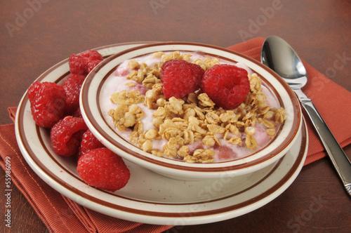 Greek yogurt with raspberries