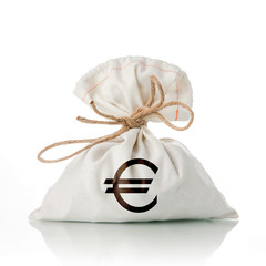 EURO money bag