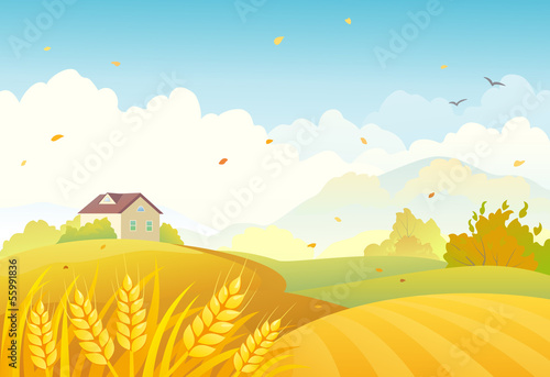 Fall fields