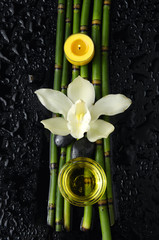 spa still life with orchid and bamboo grove ,zen stone