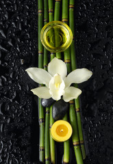 orchid and bamboo grove ,zen stone ,massage oil, on wet