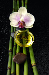 beautiful orchid and bamboo grove ,zen stone ,massage oil