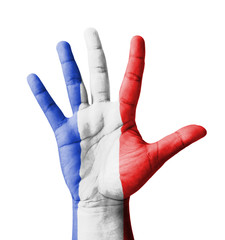 Open hand raised, multi purpose concept, Guadeloupe flag painted