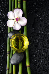 orchid and bamboo grove ,zen stone ,massage oil