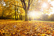 goldener Herbsttag