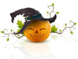 pumpkin with a hat - 55999088