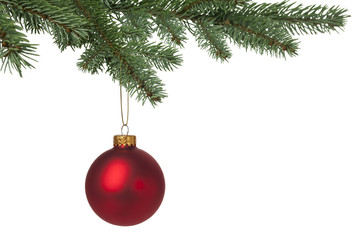Red Christmas bauble hanging on pine tree