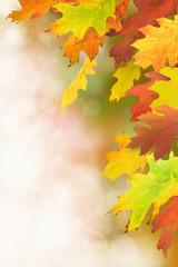 Herbst 33