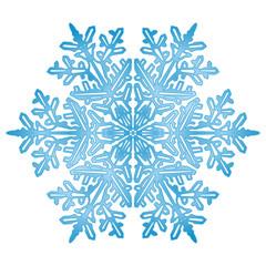 Eisblume, Eiskristall, Eis, Symbol, Zeichen, Winter, Schnee, 2D