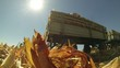 Farmers Harvesting Corn