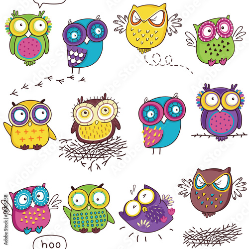 Seamless pattern with color owl in white background