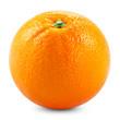 orange - 56010077