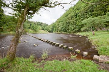 Stepping Stones, River Hodder, Whitewell, Bowland, Lancashire