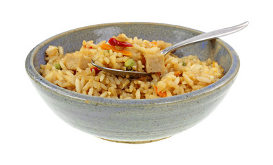 Chicken Fried Rice on Spoon