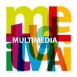 Vector Multimedia. Broken text