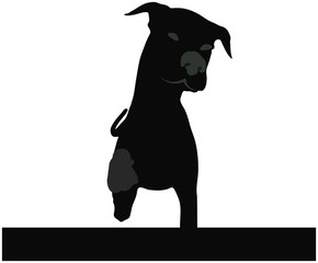 stock vector of dog silhouette standing