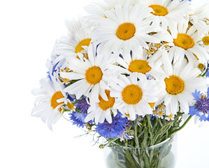 beautiful bouquet of daisies in vase