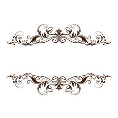 Elegant frame banner, floral elements