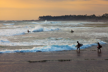 Surfer on Blue Ocean Wave in Bali, Indonesia