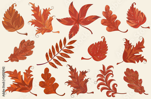 Set of brown autumn leaves