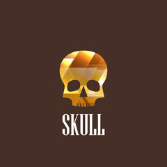 illustration with a skull icon