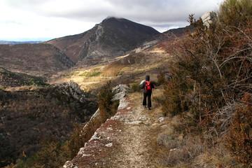 chemins provençaux en automne