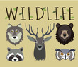 Wildlife set - masks of wild animals