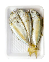 Mackerel fish with package
