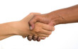 Handshake of friendship isolated on white background.